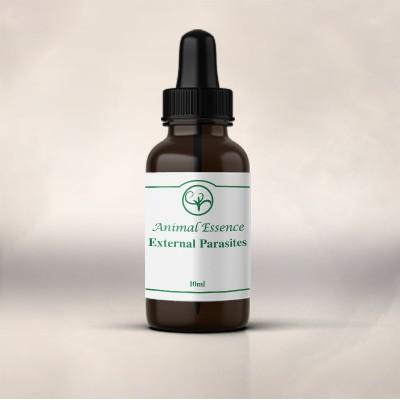 External Parasites Essence (10ml)