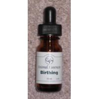 Birthing Essence (10ml)