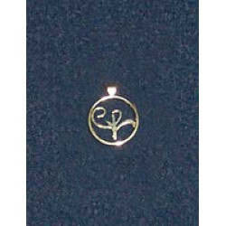 Stirling Silver Logo Pendant (small)