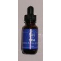 Katabatic Sea Essence (25ml)